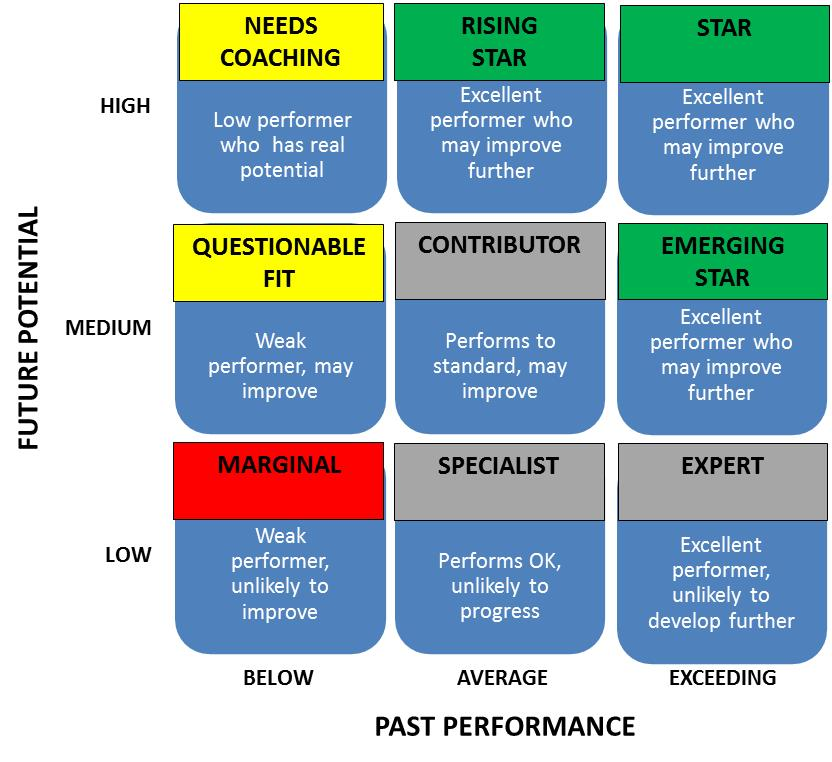 Performance-Potential Matrix Detail
